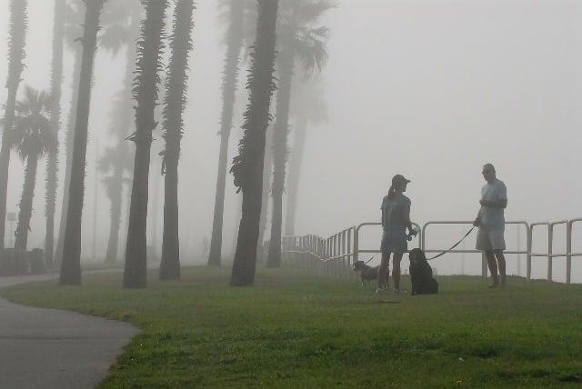 Respectez les mesures barrières pendant la promenade quotidienne